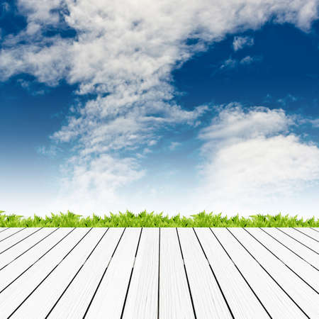 Fresh spring green grass with blue sky and wood floor background Stock Photo - 15381467