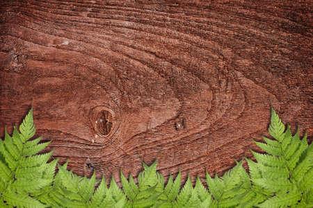 Wooden background with green grass border Standard-Bild