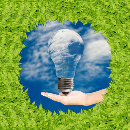 Green grass frame and Hand holding  light bulb, against sky background  photo