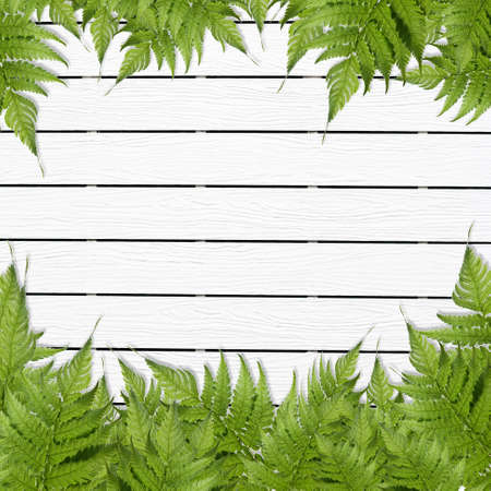 White Wooden background with green grass border Stock Photo - 15381563