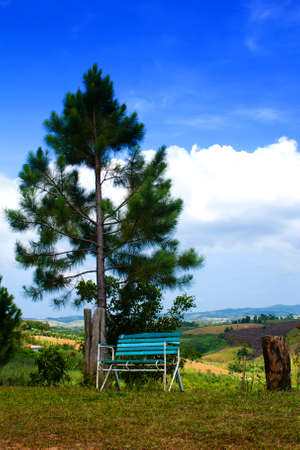 Bench with landscape background photo