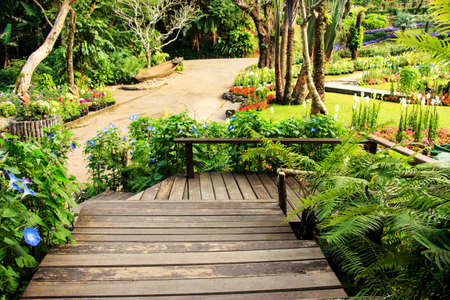 Landscape garden design. The path in the garden with pond in asian style