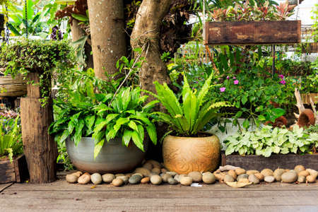 Garden design,beautiful park,Mae Fah Luang,Chaing rai,Thailand Stock Photo