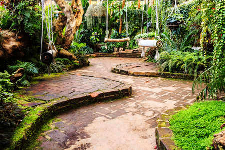 Landscaping in the garden. The path in the garden asian style photo