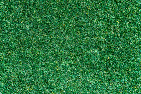 top view grass fake texture background