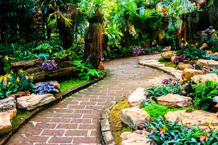 The path in the garden. photo