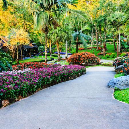 Landscaping in the garden. The path in the garden.  Standard-Bild