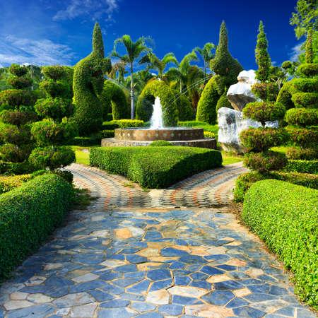 Landscaping in the garden design. photo