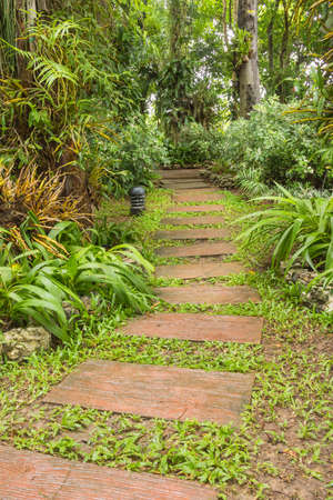 rainy day: Pathway in the garden in rainy day.