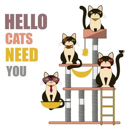 condo: Cats House,Condo Flat Style