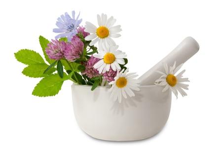Herbal medicine  healing herbs, mortar and pestle