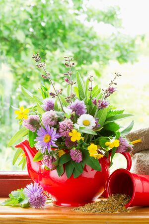 raw tea: red teapot with bouquet of healing herbs and flowers on windowsill Stock Photo