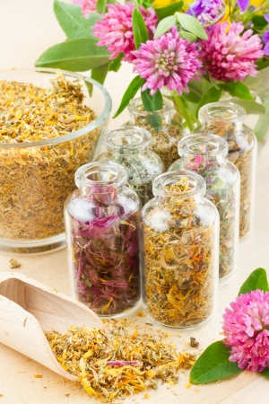 herb tea: different healing herbs in glass bottles, flowers bouqet, herbal medicine Stock Photo