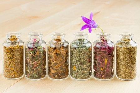 traditional healer: healing herbs in glass bottles, herbal medicine