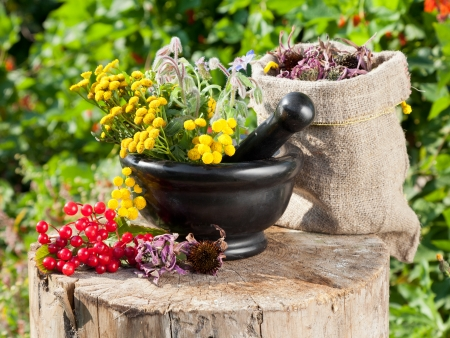 healing herbs in mortar and in sack, herbal medicine Stock Photo - 16508578