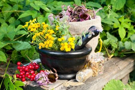 mortero: hierbas curativas en el mortero, la medicina herbaria