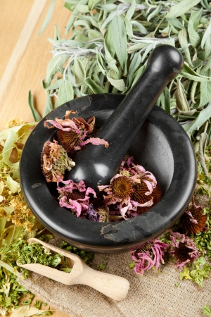 healing herbs on wooden table, mortar and pestle, herbal medicine, top view Stock Photo - 16508605