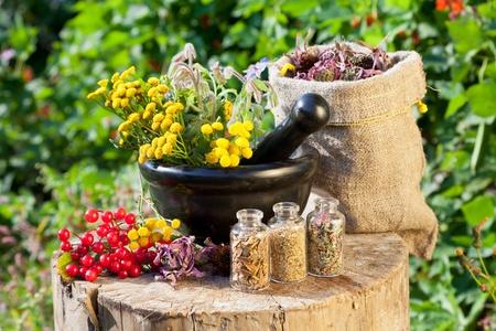 homeopatia: hierbas curativas en mortero y en el costal, la medicina herbal Foto de archivo