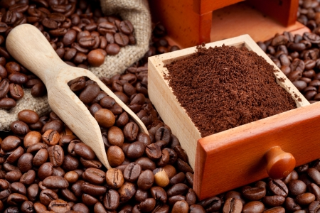 coffee beans and powder with wooden scoop photo