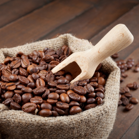 sack with coffee beans and wooden scoop photo