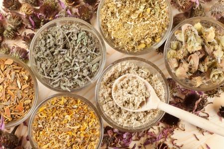medicina natural: hierbas curativas en vasos de vidrio, vista superior, la medicina herbal