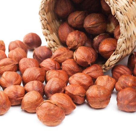 full willow: hazelnuts and basket on white Stock Photo