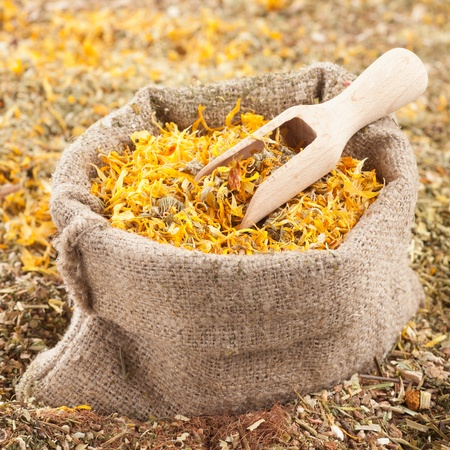 sack of healing herbs and wooden scoop, herbal medicine Stock Photo - 19608694