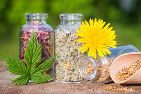 glass bottles with healing herbs on wooden board in sunset sunlight, herbal medicine Stock Photo - 20141161