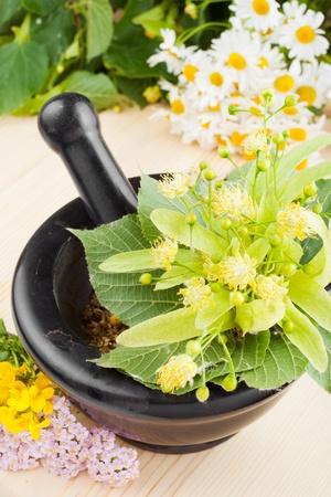 tilo: mortero y maja con lindenflowers, manzanilla y milenrama, la medicina herbal