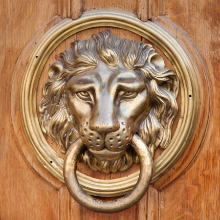 Door knocker, handle -  lion head photo