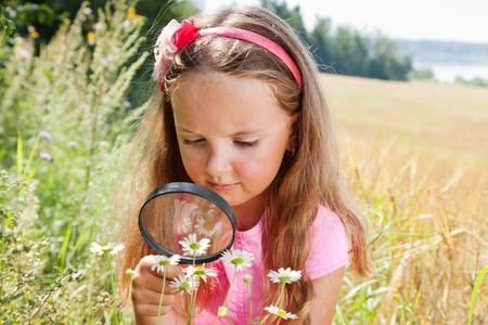 field glass: Little girl exploring the daisy flower through the magnifying glass outdoors