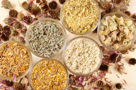 healing herbs in glass cups,top view, herbal medicine Stock Photo - 22280725