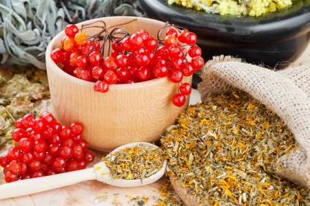 medicinal herbs and healthy berries on table, herbal medicine photo