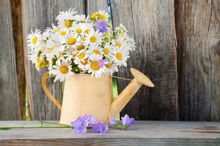 watering can with summer bouquet of daisies flowers on wooden background photo
