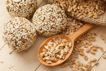 macrobiotic: macrobiotic healthy food: balls from ground wheat sprouts with sesame seeds, sprouted grains and sack on kitchen table
