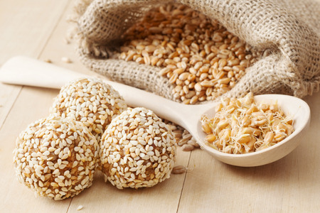macrobiotic healthy food: balls from ground wheat sprouts with sesame seeds, sprouted grains and sack with seeds on kitchen table photo