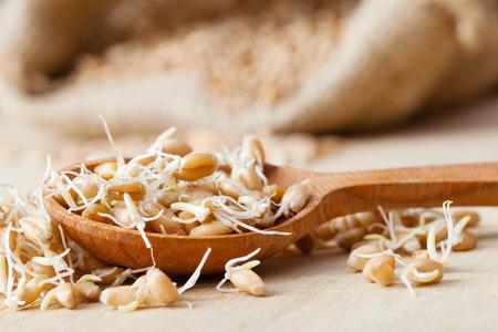 germes de blé en sac de toile de jute et cuillère en bois