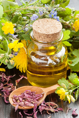 glass bottle of essential oil and healing herbs, herbal medicine Stock Photo