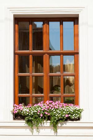 Flower box below a window on an apartment building photo