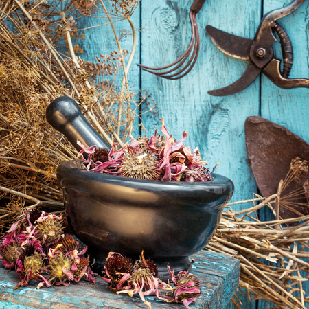 mortar with dried healing herbs and garden equipment outdoors photo