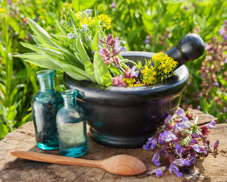 plant medicine: mortar with healing herbs and sage, glass bottle of essential oil outdoors Stock Photo