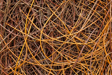sallow: weaving wicker background closeup
