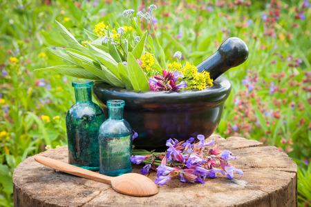 hierbas: mortero negro con hierbas y salvia curativas, botella de cristal del aceite esencial al aire libre Foto de archivo