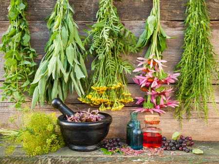 bunches of healing herbs on wooden wall, mortar with dried plants and bottles, herbal medicine photo