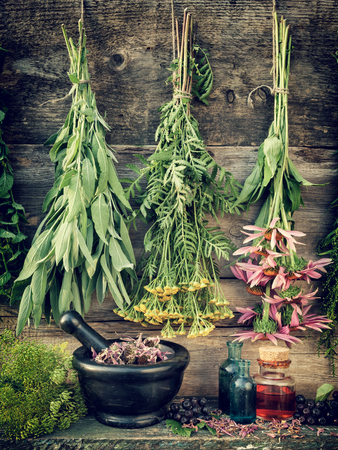 healing herbs, herbal medicine, retro stylized photo