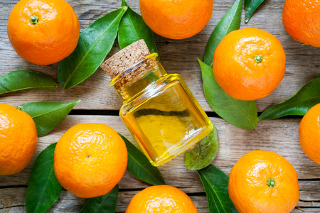 Ripe tangerines with leaves and bottle of essential citrus oil on a rustic  wooden table. Top view.