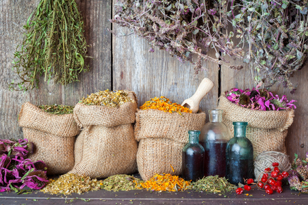 Healing herbs in hessian bags and bottles of essential oil near rustic wooden wall, herbal medicine.