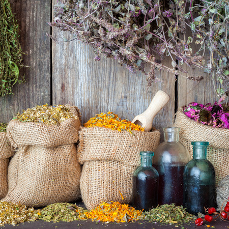 Healing herbs in hessian bags and bottles of essential oil or tincture near rustic wooden wall, herbal medicine.
