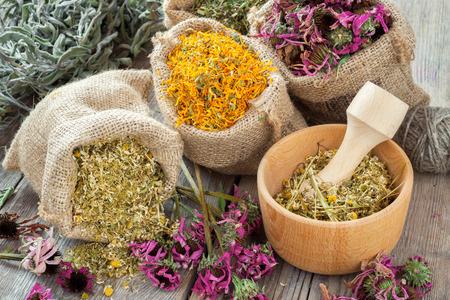 plantas medicinales: Hierbas curativas en bolsas de arpillera, mortero de madera con manzanilla en la mesa rústica, la medicina herbal. Foto de archivo