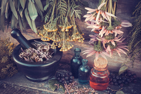 Vintage stylized photo of  healing herbs bunches, mortar and oil bottles, herbal medicine.